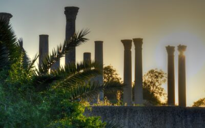 France 24 heads to Carthage with UNESCO